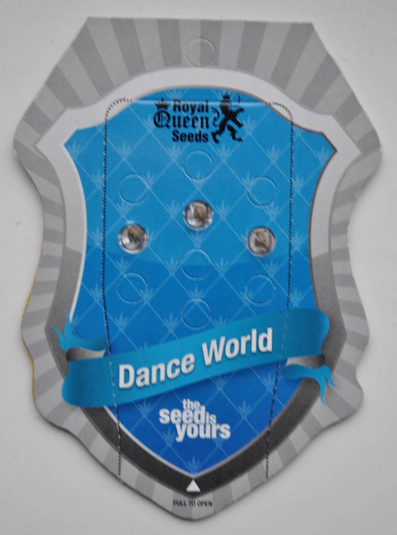 Dance World  (Royal Queen Seeds) - 3 fem.