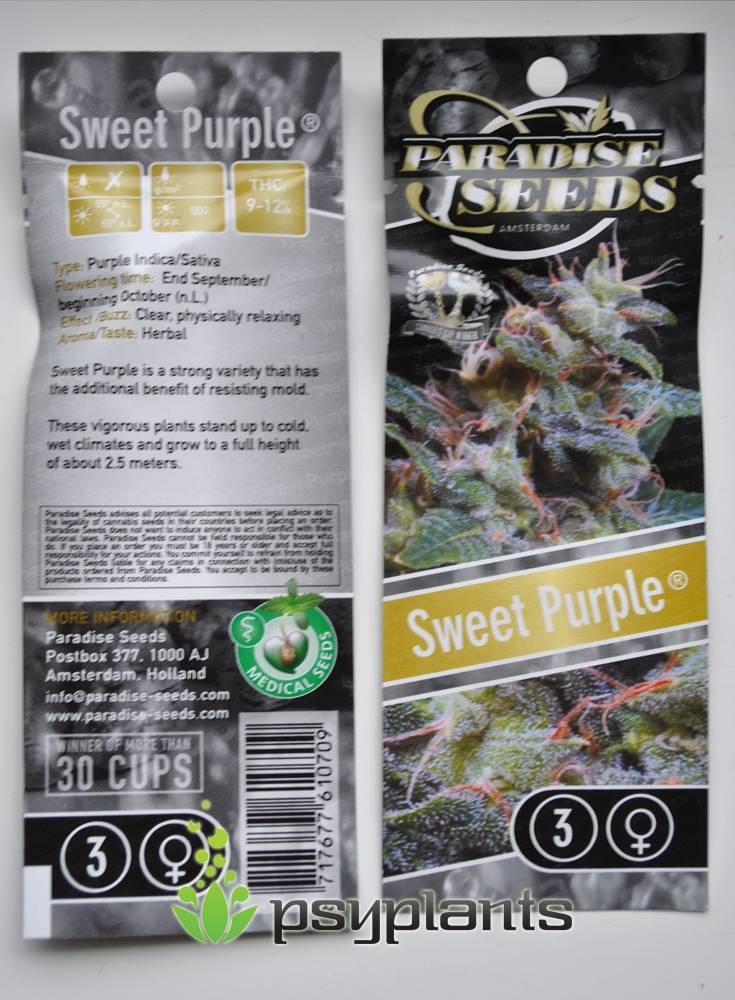 Sweet Purple (Paradise Seeds) - 3 fem.